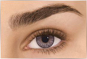 Øje med Alcon Dailies Freshlook farvet kontaktlinse - gray