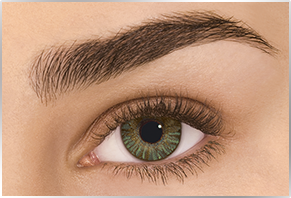 Øje med Alcon Dailies Freshlook farvet kontaktlinse - green