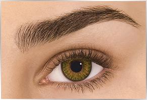 Øje med Alcon Dailies Freshlook farvet kontaktlinse - pure hazel