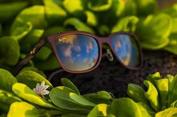 Solbriller fra Maui Jim
